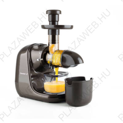 G21 Chamber vízszintes gyümölcsprés 6008119